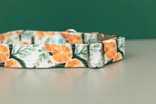Load image into Gallery viewer, Orange Spiced Water Resistant Dog Collar