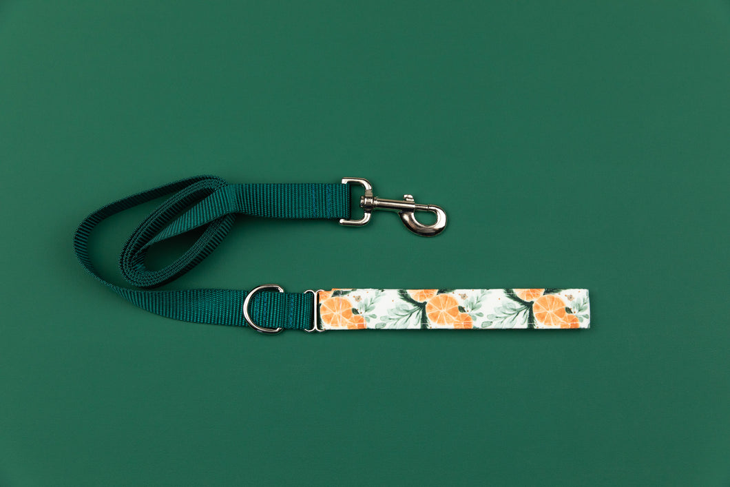Orange Spiced Matching Dog Leash