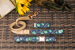 Eucalyptus Dog Collar