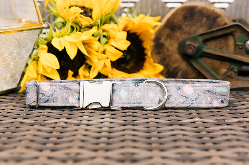 Grey Feather Spirit Dog Collar