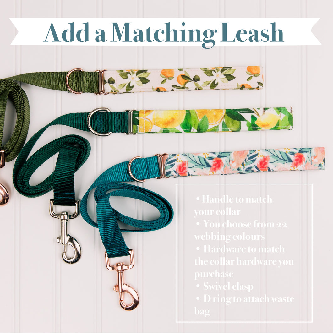 Add a Matching Leash *for small dogs*