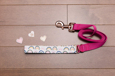 Valentine's Rainbow Rose Gold Dog Leash