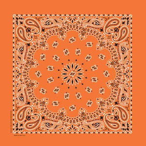 NT4404 Bandana Paisley Orange Bandanas Virginia City Motorcycle Company Apparel