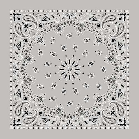 BD2502 Bandana Paisley Silver Bandanas Virginia City Motorcycle Company Apparel