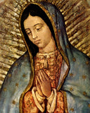 Virgin of Guadalupe photo prints