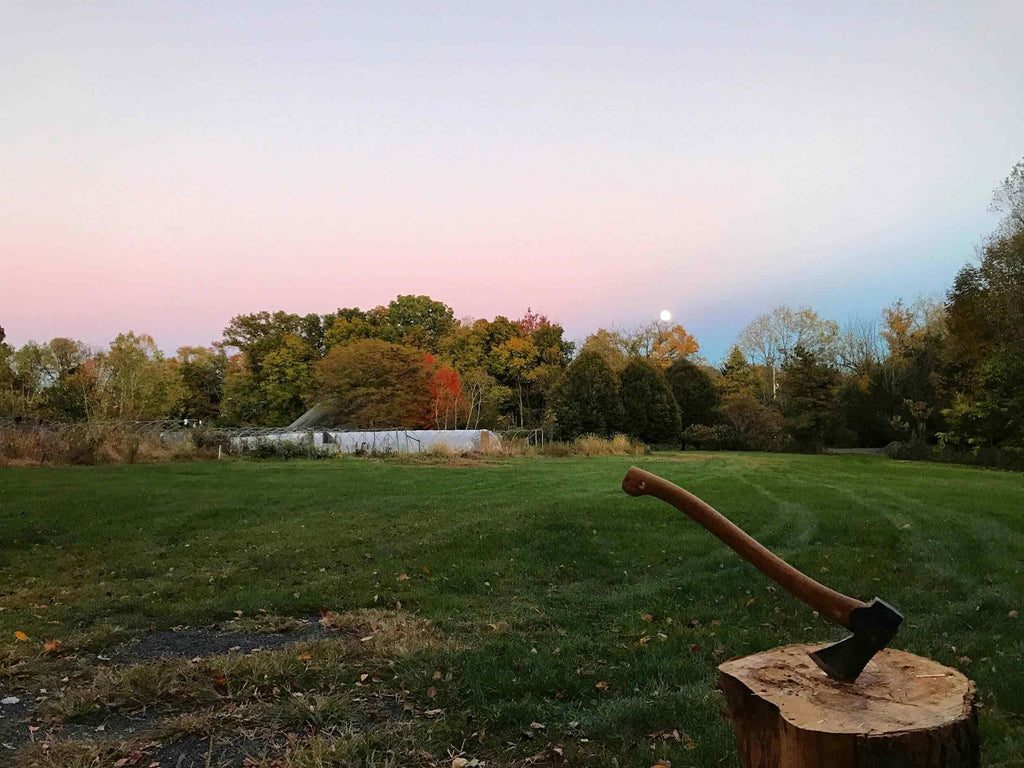 Wild Arc Farm Hudson Valley Natural Wine and Piquette Producers