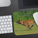 Run Fast, Bite Hard, and Fear Nothing Mouse Pad