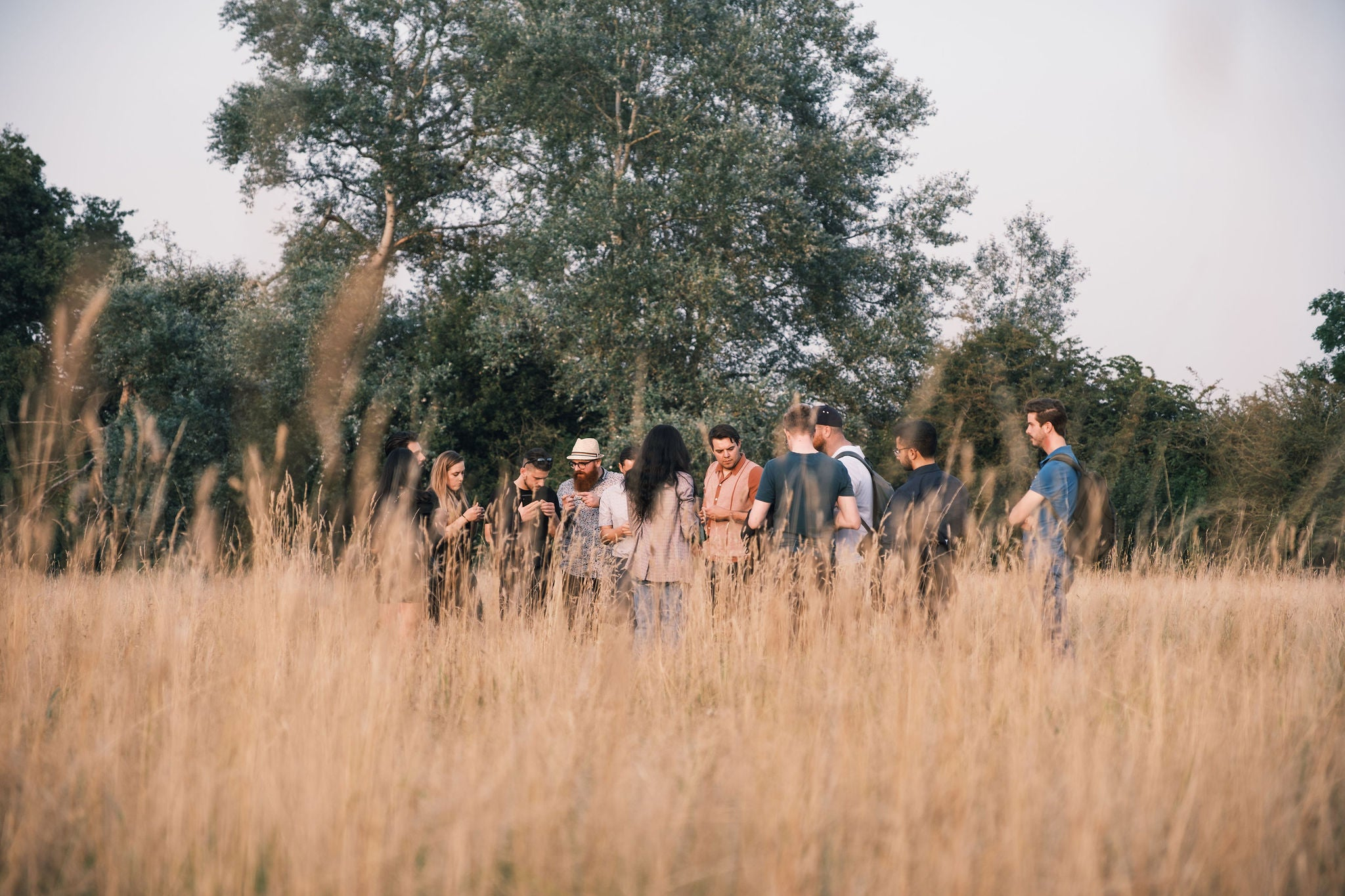 foraging in the Buckinghamshire Woodlands