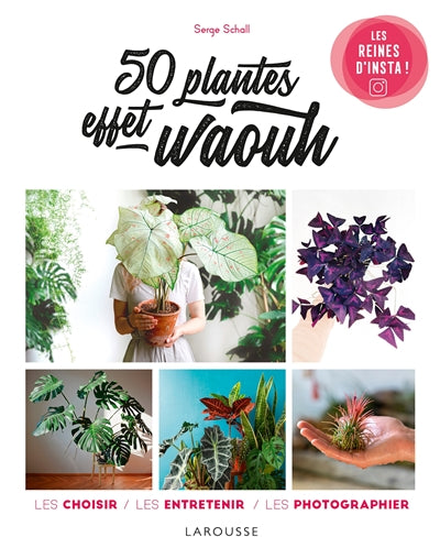 50 PLANTES EFFET WAOUH