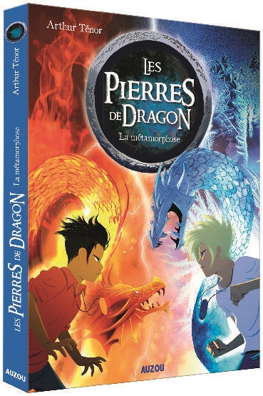 PIERRES DE DRAGON T.01: LA METAMORPHOSE