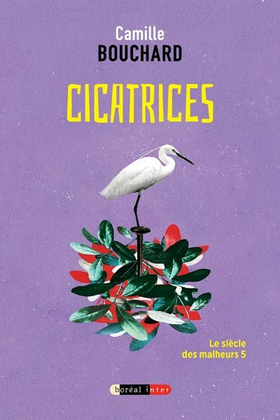 CICATRICES                        INT 77