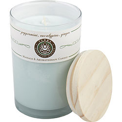 Peppermint, Eucalyptus & Ginger By Terra Essential Scents Massage & Aromatherapy Soy Candle 12 Oz Tumbler. A Refreshing & Stimulating Blend With Clear Quartz Gemstone. Burns Approx. 30+ Hours
