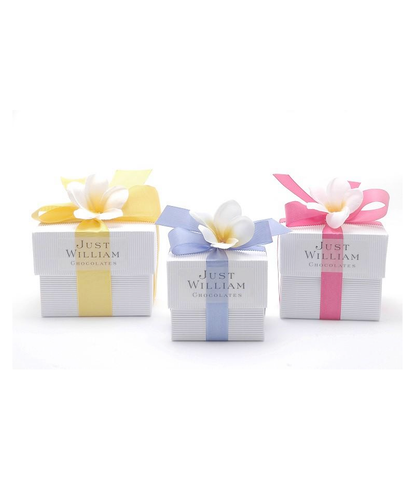 Medium Just William Easter Chocolate Box