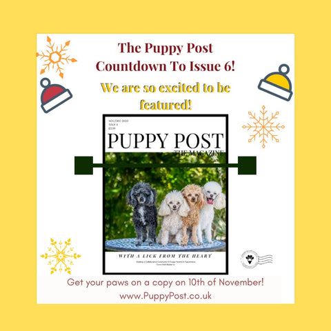Puppy Post Magazine featuring dogs and their owners and small businesses