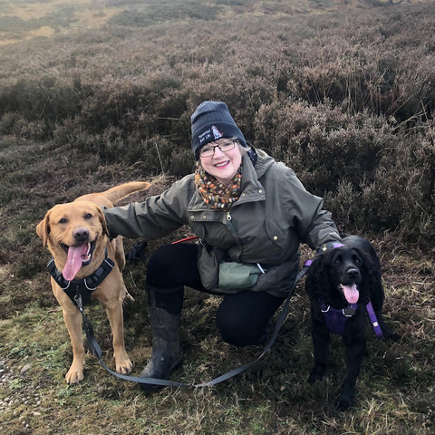 Fox red Labrador and black spaniel out on Cannock Chase with owner Kim wearing their handmade dog collars and accessories