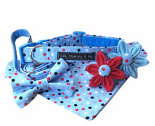 Dotty Blue Dilyn dog collar, bandana, lead, bow tie and flower. Handmade in the U.K.  glorious blue fabric with red, white and blue polka dot print.