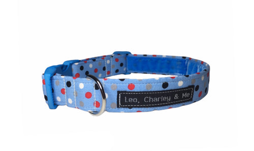 Dilyn the Downing Street Dog dotty blue dog collar in washable cotton poplin