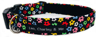 Washable dog collar in Ditsy Floral cotton print with multicolour flowers dotted everywhere