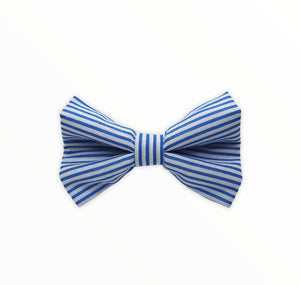 Handmade dog bow tie in cotton print. Made by hand in the U.K. and washable. Blue candy stripe cotton poplin dog bow tie.