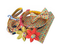 Bright yellow polka dot print dog collar, bandana, lead and bow with accessories.