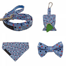 Dilyn The Downing Street Dog dotty for blue lead, bandana and accessories.