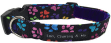 Rainbow paw print dog collar with black background and purple velvet lining.