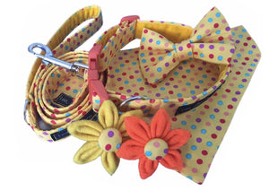 Sunshine Spot print dog collar and accessories. Hand made in the U.K. and washable.