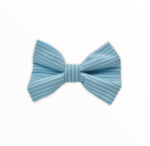 Handmade dog bow tie in cotton print. Made by hand in the U.K. and washable. Turquoise candy stripe cotton poplin dog bow tie..