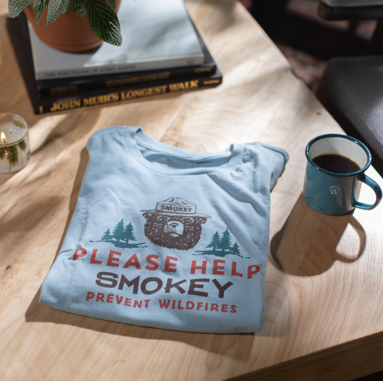 Please Help Smokey Tee in Chambray