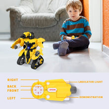 Load image into Gallery viewer, the little boy are playing the rc robots