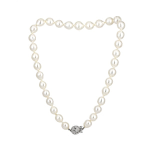 Alex Sepkus South Sea Pearl Strand with Diamond Clasp Necklace