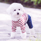 Smart Dog Striped Outfit