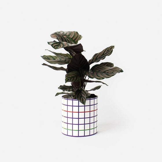 PAPER COVER POTS / THE SQUARED - S