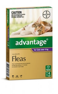 ADVANTAGE CAT 4KG+ PURPLE 4PK