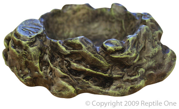 REPTILE ONE DISH MED 13 X 11CM