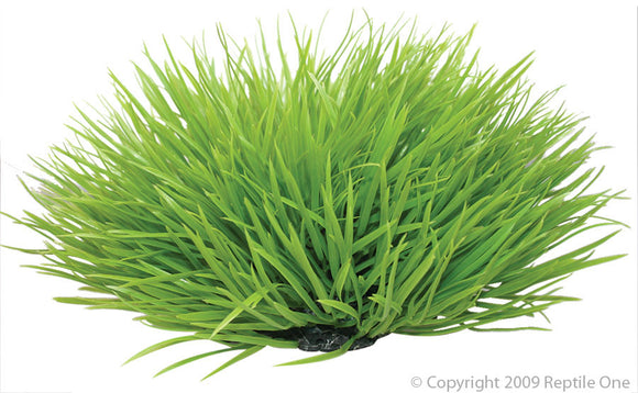 REPTILE ONE SPINIFEX GREEN PLANT 30CM