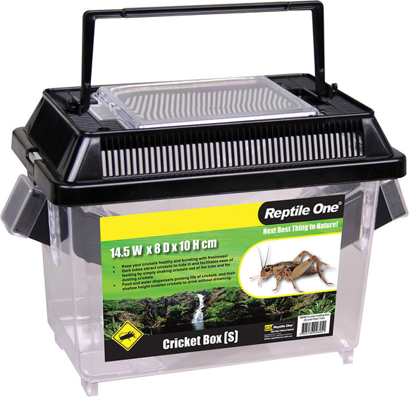 REPTILE ONE CRICKET HOLDING BOX SML