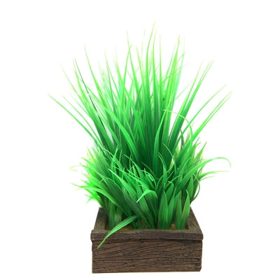 PLANTER BOX GREEN GRASSES