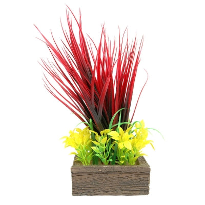 PLANTER BOX RED GRASSES