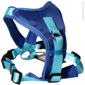 PET ONE 46-56CM HARNESS COMFY 20MM PADDED BLUE