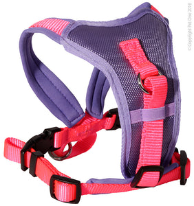 PET ONE 64-78CM HARNESS COMFY 25MM PADDED PURPLE