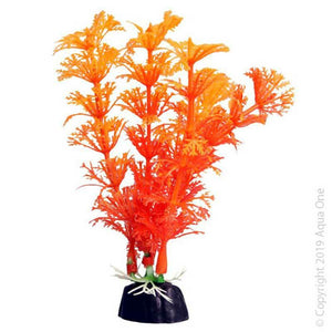 BETTASCAPE BETTA AMBULIA ORANGE