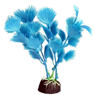 BETTASCAPE BETTA FAN PALM BLUE