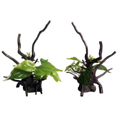 ECOSCAPE DEVILS IVY DRIFTWOOD GREEN