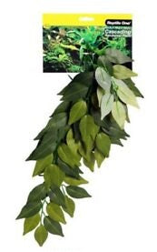 REPTILE ONE VARIGATED IVY CASCADING PLANT 40CM GREEN