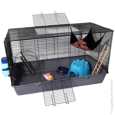 PET ONE RAT STARTER KIT