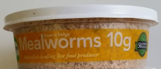 PISCES MEALWORMS REGULAR 10GM