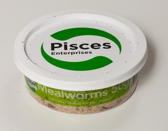 PISCES MEALWORMS REGULAR 50GM