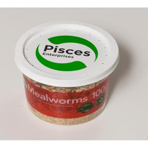 PISCES MEALWORMS REGULAR 100G