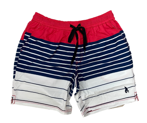 Plus Size Stripes Swim Shorts